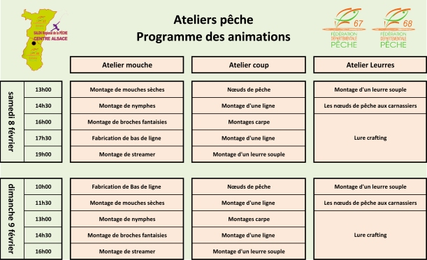 animations atelier final